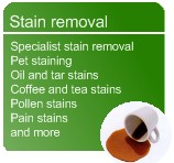 Stain removal for carpets and sofas in Nottinghamshire